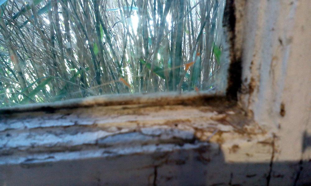 Asbestos In Window Putty Asbestos In Putty
